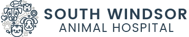 South Windsor Animal Hospital